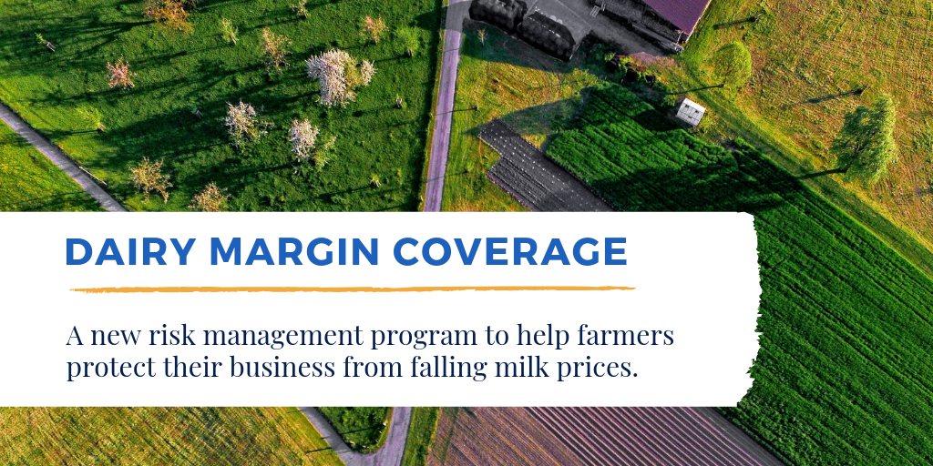 Dairy Margin Coverage is a new risk management program to help farmers protect their businesses from falling milk prices.
