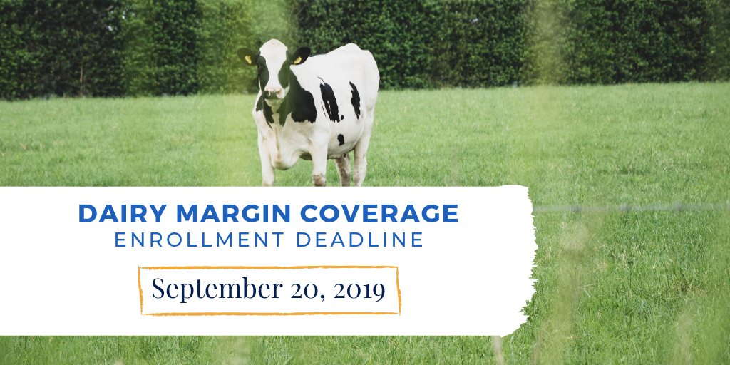 Dairy Margin Coverage enrollment deadline is Sept. 20, 2019.