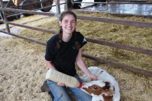 Montana, an on-farm intern, with a calf