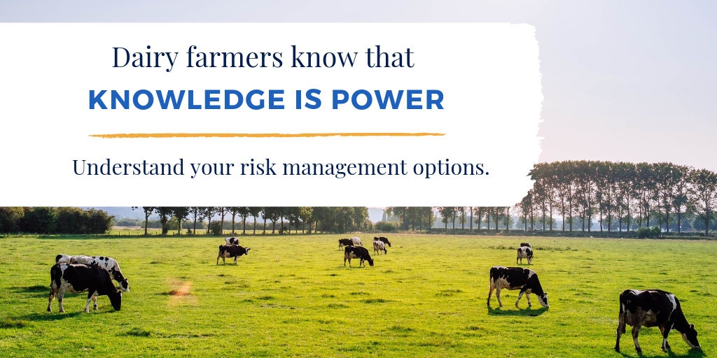 Dairy farmers know that knowledge is power. Understand your risk management options.