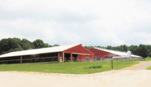 Vista Grande Farms