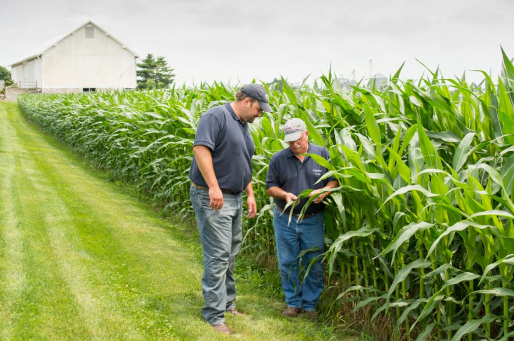 On-farm team program